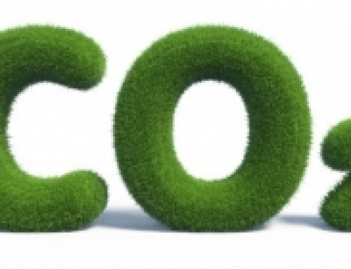 Axy7 is now Carbon Neutral – ♲ 🌲